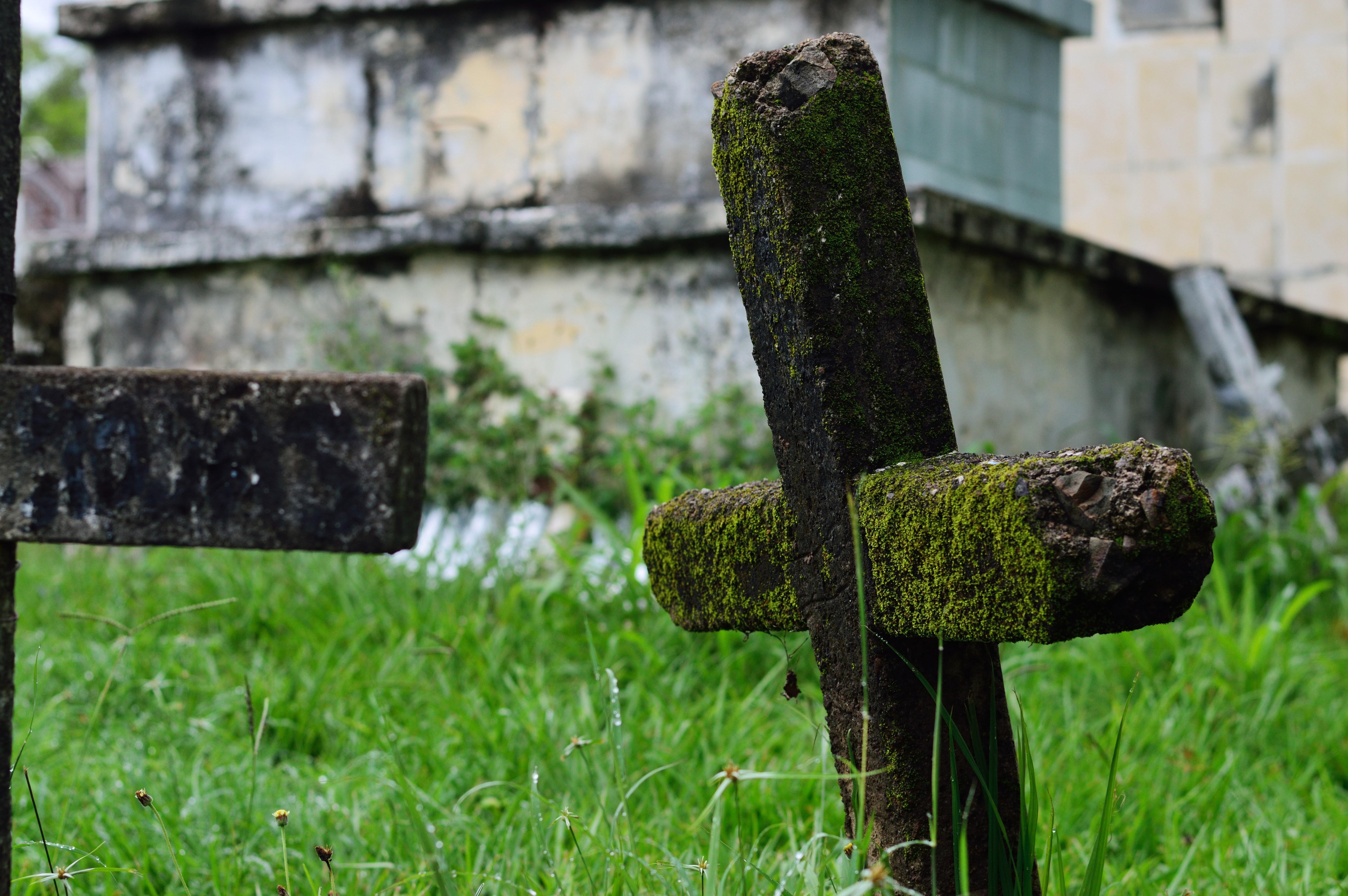 ancient-burial-cemetery-creepy-446461